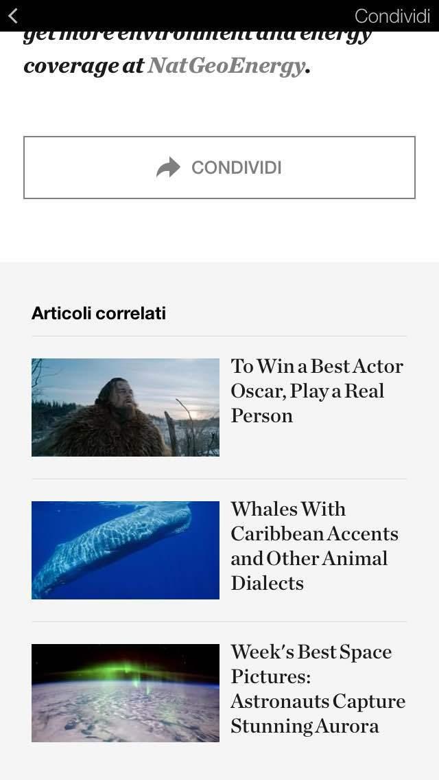 istant articles correlati